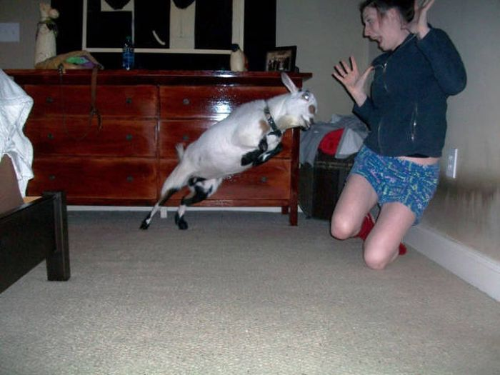 Perfectly Timed Pictures That Were Snapped Seconds Before A Disaster (44 pics)