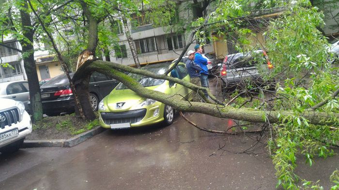 Driver Parks In The Luckiest Parking Spot Ever (3 pics)