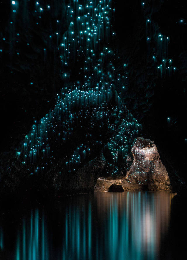Glow Worms Make The Waitomo Caves A Magical Place To Visit (12 pics)