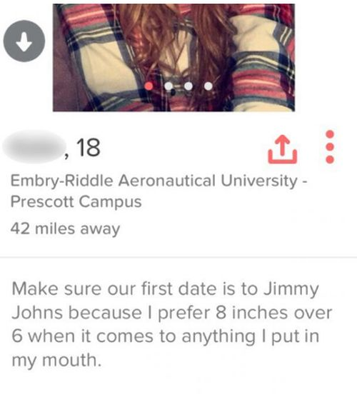 Blunt Tinder Users Who Got Straight To The Point With Their Profile (16 pics)
