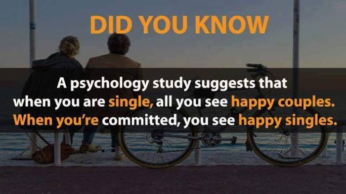 Crazy Facts That Could Improve Your Quality Of Life (20 pics)