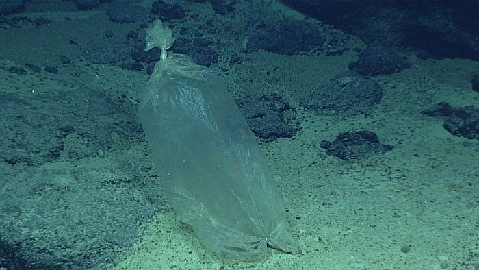 Trash Has Officially Reached The Deepest Place On Earth (3 pics)