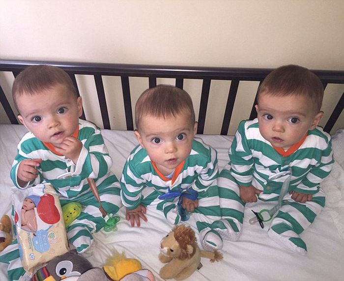 Mom Has Her Hands Full With Genetically Identical Triplets (5 pics)