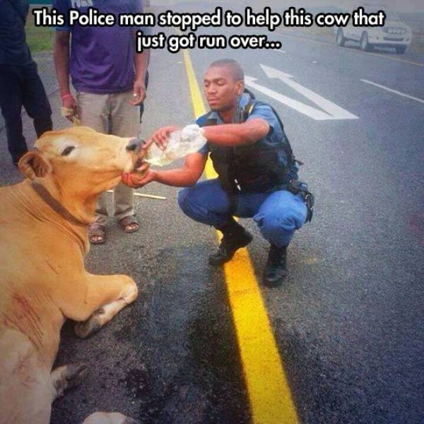 Wonderful Acts Of Kindness That Will Restore Your Faith In Humanity (55 pics)
