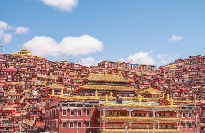 A Look At The World's Busiest Buddhism Campus (14 pics)