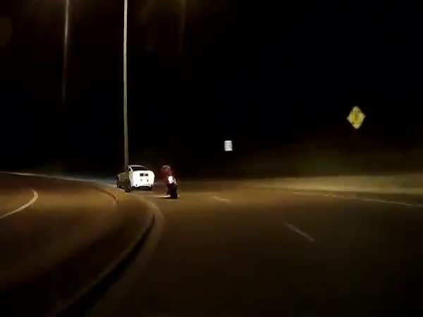 Mustang Knocks Dude Off Motorcycle