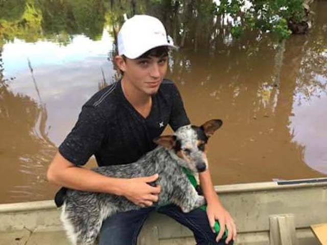 Father And Son Save Animals From Flooded Texas Homes (9 pics)