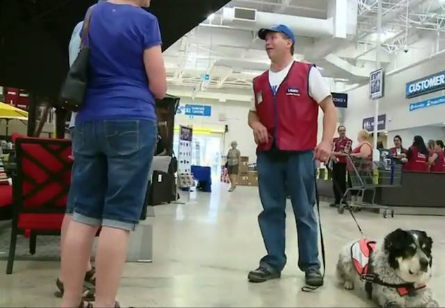 Lowes In Canada Hires Man And Service Dog As Package Deal (8 pics + 1 gif)