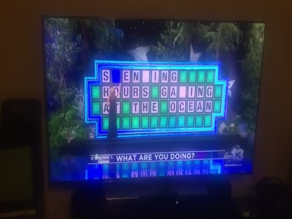 Hilarious Wheel Of Fortune Fail