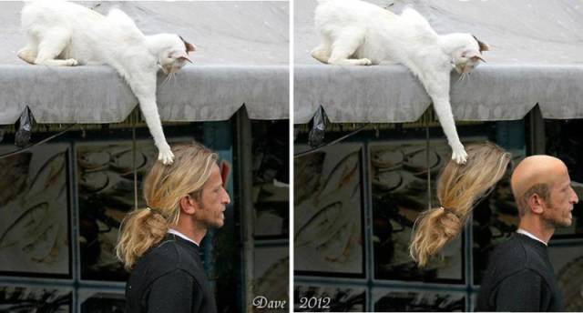 When You Get Caught In The Act And There's Nowhere To Hide (35 pics)