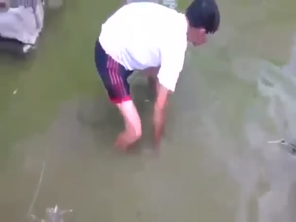This Is Not How You Catch An Electric Eel