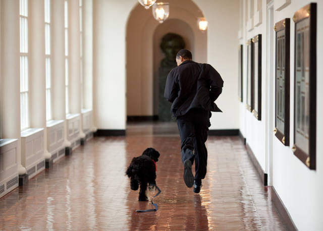 Barack Obama's Photographer Has Taken 2 Million Pictures Of The President (114 pics)