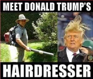 Donald Trump Memes That Sum Up His Presidential Campaign So Far (26 pics)