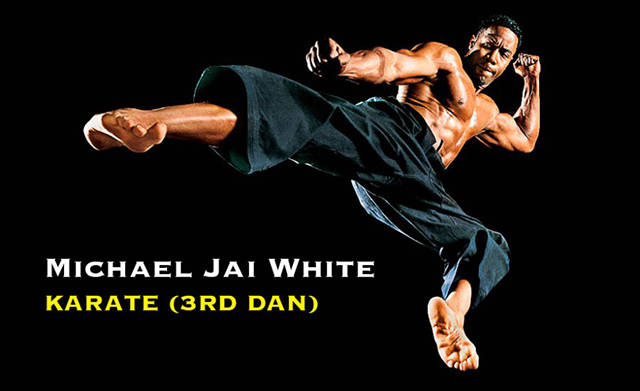 Celebrities Who Also Happen To Be Black Belts (30 pics)