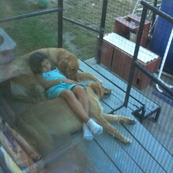 You Just Can't Argue With A Dog's Loyalty (40 pics)