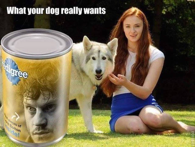 The Best Game Of Thrones Memes The Internet Has To Offer (38 pics + 3 gifs)