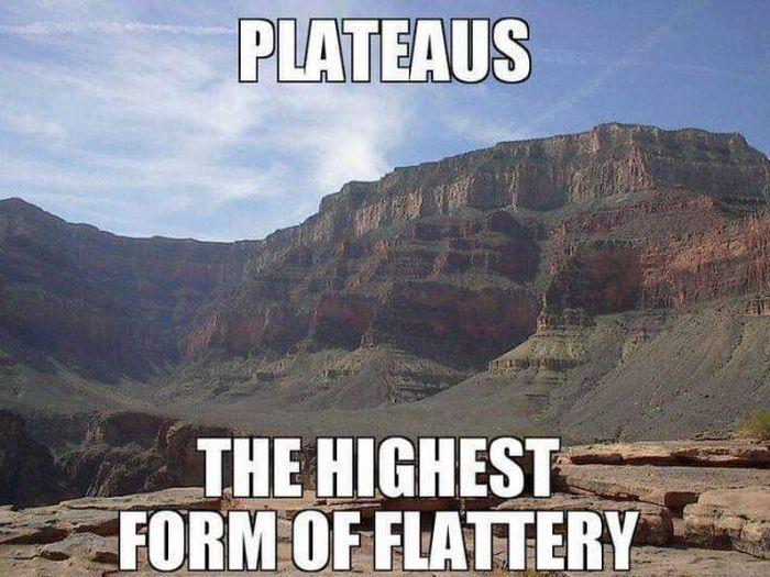 Funny Memes (56 pics)