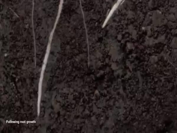 SoilCam Intro Compilation