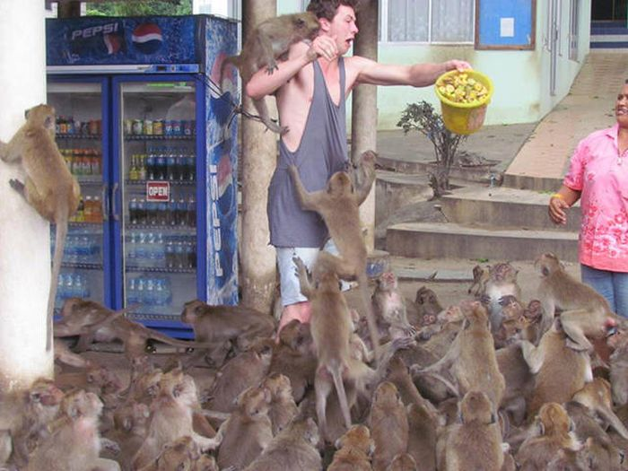 Everything Is A Little Weirder In Thailand (43 pics)