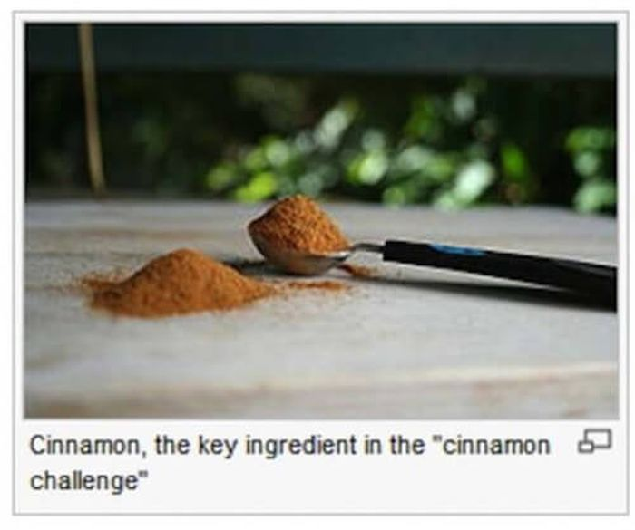 Hilarious Photo Captions From The Depths Of Wikipedia (21 pics)