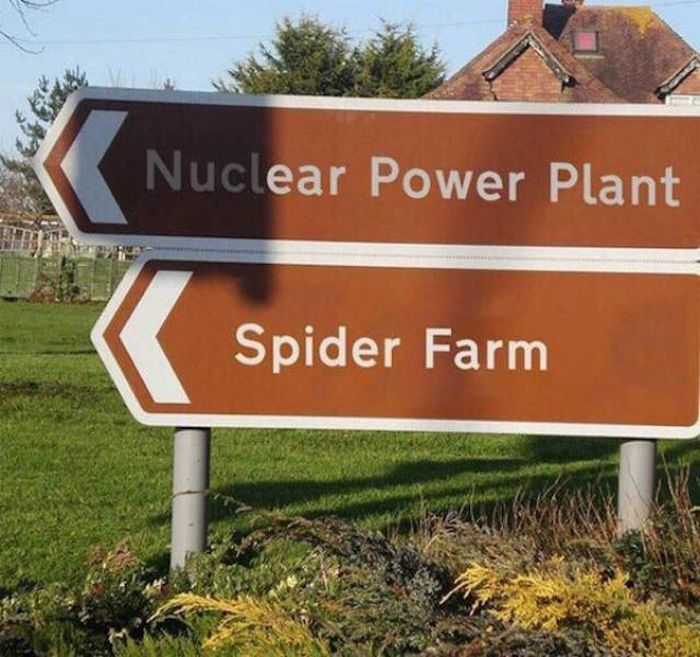 Nope Is The Safest Word You Could Say In These Situations (44 pics)
