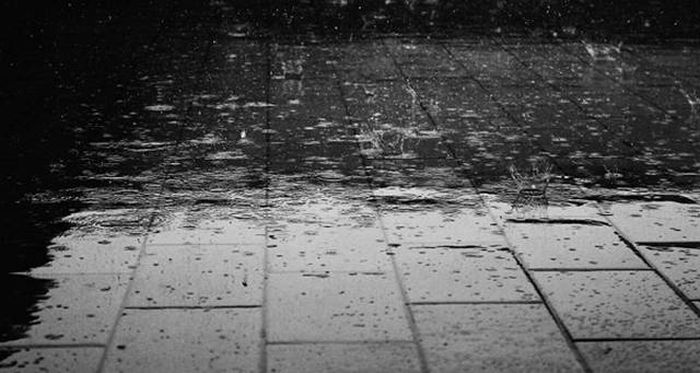 The Real Reason Why Humans Love The Smell Of Rain (5 pics)