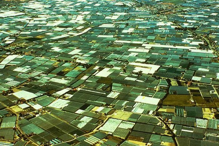 The Greenhouses Of Almeria Are Quite Impressive (26 pics)
