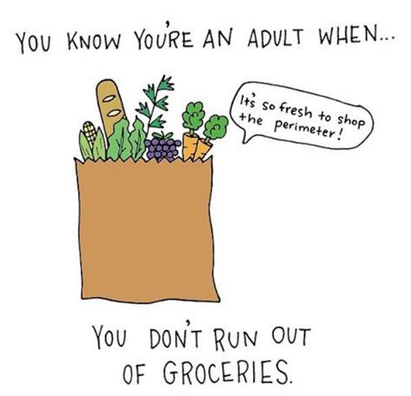 Signs That You've Transformed Into An Adult (14 pics)