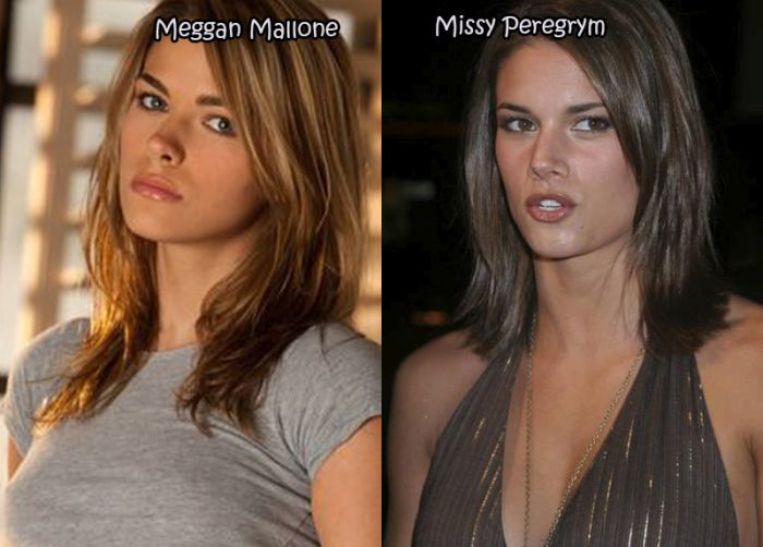 Hot Female Celebrities And Their Sexy Porn Star Doppelgangers (20 pics)