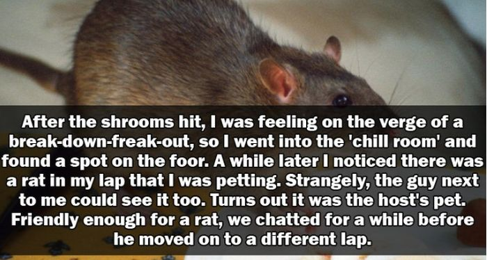 People Share Their Hilarious And Crazy Party Stories (15 pics)