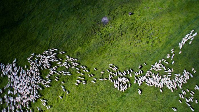 The Most Incredible Drone Photos Of 2016 (23 pics)