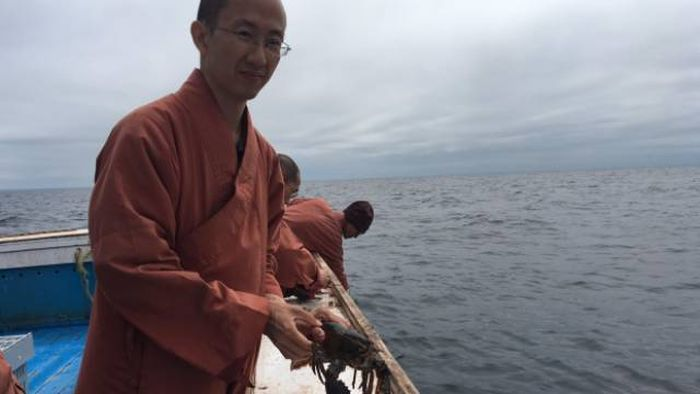 Buddhist Monks Purchase Lobsters Only To Set Them Free (11 pics)