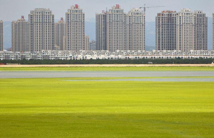 Beachgoers In China Are Bathing In Algae (19 pics)