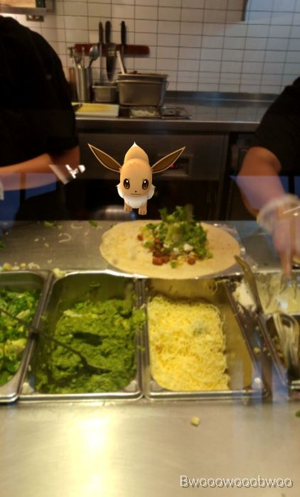 The Craziest Places Where Pokemon Go Fans Have Found Pokemon (14 pics)
