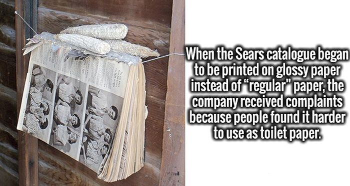 Impressive Facts That Your Brain Is Going To Love (19 pics)