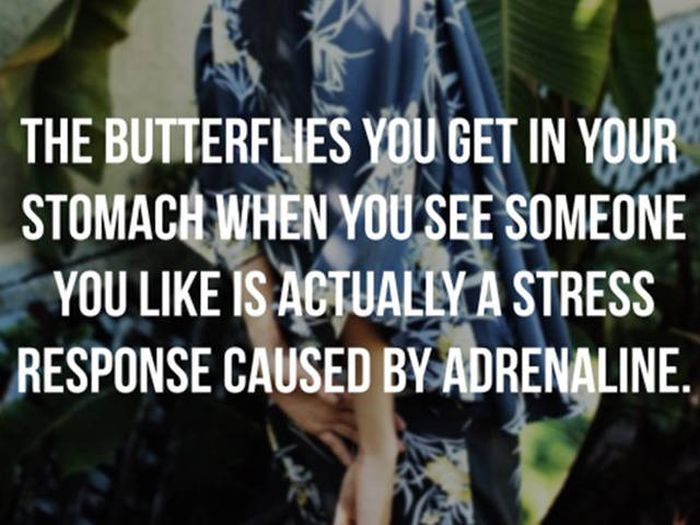 Psychological Facts That Will Help You Live A Better Life (26 pics)