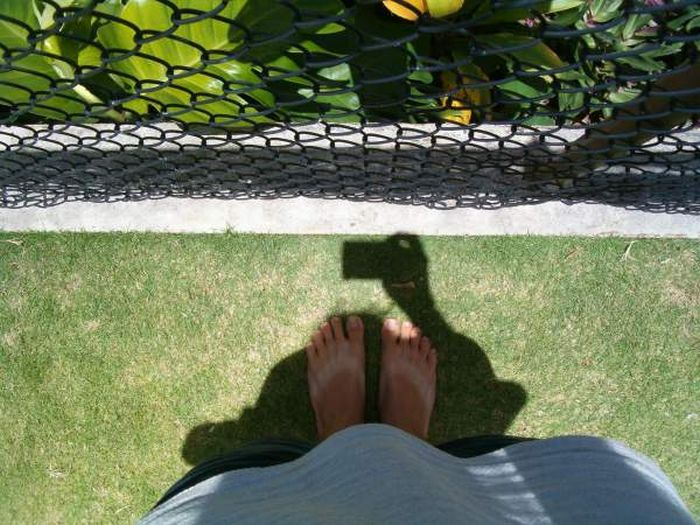 Lahaina Noon Causes Shadows To Stand Up Straight (11 pics)