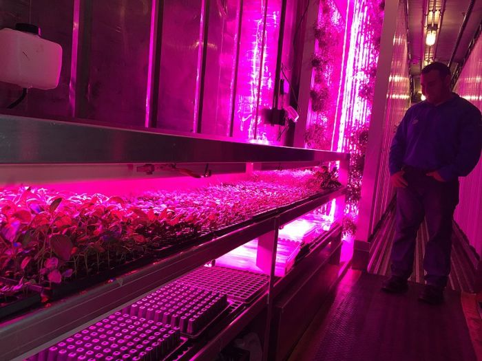 Google Employees Use Shipping Containers To Grow Organic Herbs (14 pics)