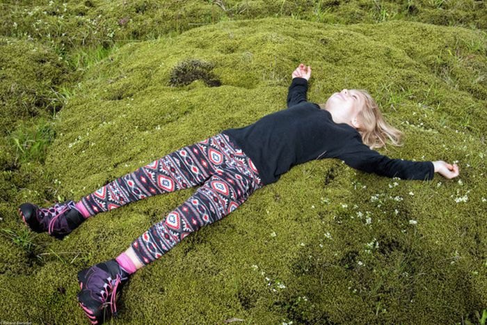 Moss in Iceland Is Unlike Any Other Moss In The World (6 pics)