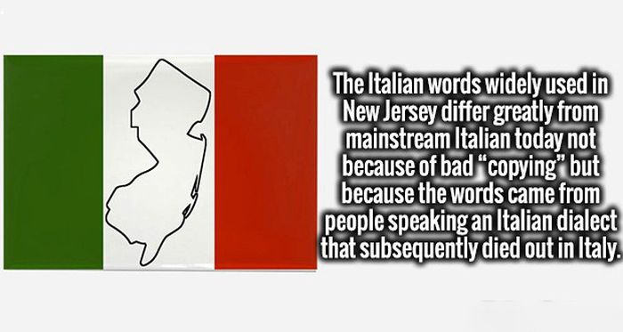 Invigorating Facts That Will Turn Your Ignorance Into Intelligence (20 pics)