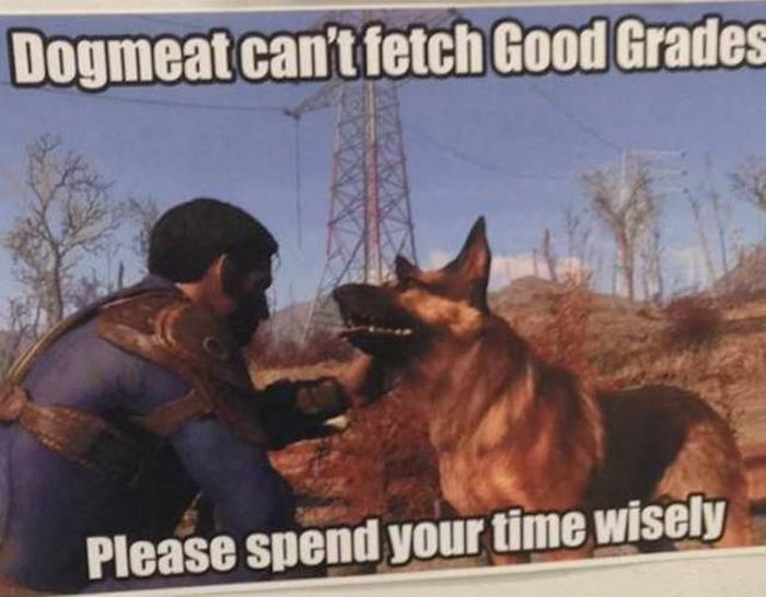 Gamers Are Just On A Whole Different Level (27 pics)