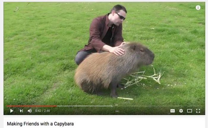 Ridiculous Videos That Could Only Come From YouTube (18 pics)