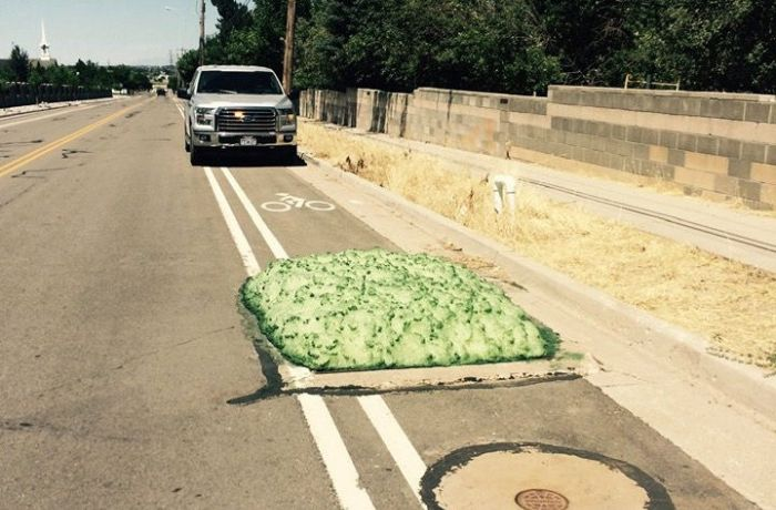 Utah Residents Baffled By Mysterious Green Foam (6 pics)