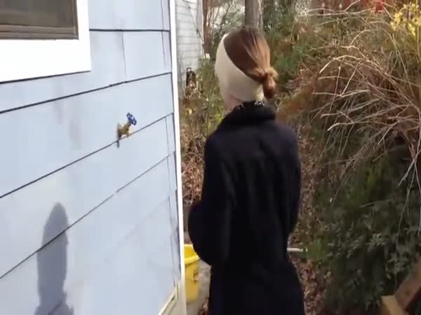 Cool Secret Entrance Into Home