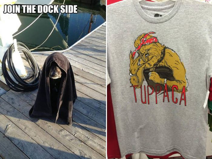Puns That Are Somehow Both Stupid And Witty Simultaneously (33 pics)