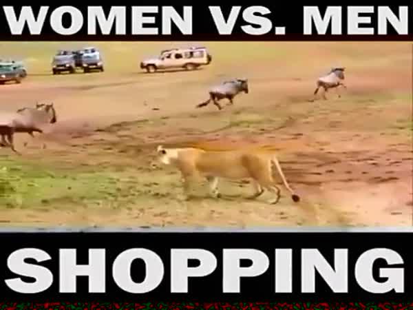 Women Vs Men Shopping