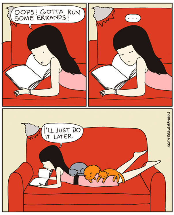 Comics That Hilariously Sum Up The Life Of A Cat Owner (52 pics)