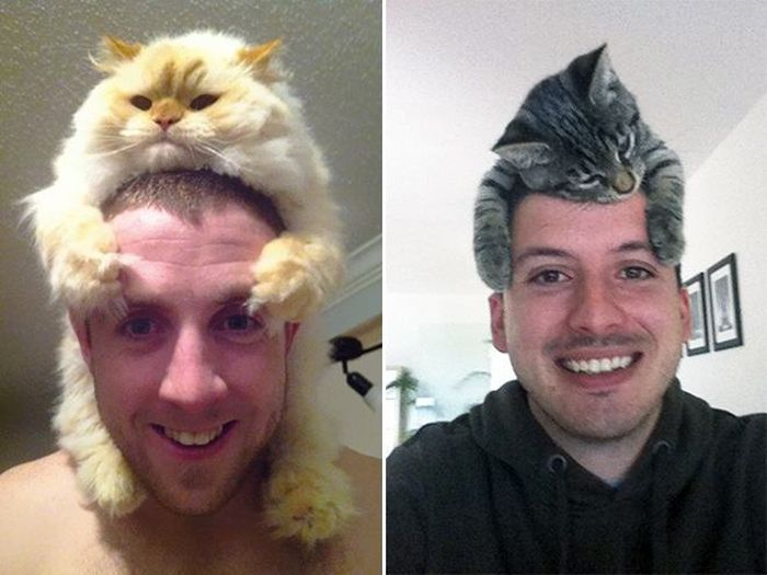 These Adorable Cats Hats Will Melt Your Heart (15 pics)