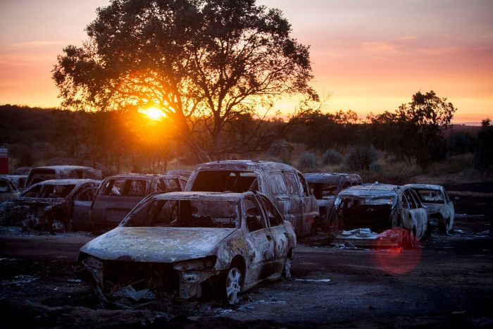 Over 400 Cars Destroyed By Fire At Music Festival (10 pics)