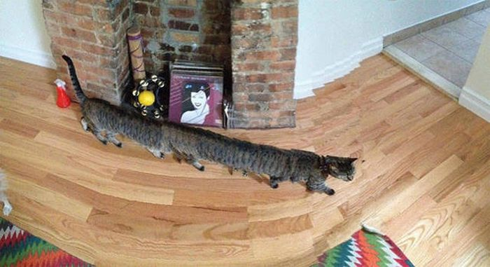 Failed Panorama Snaps That Will Mess With Your Head (47 pics)